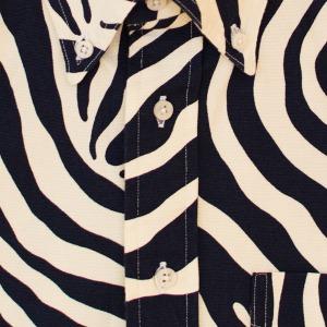 GBV Zebra